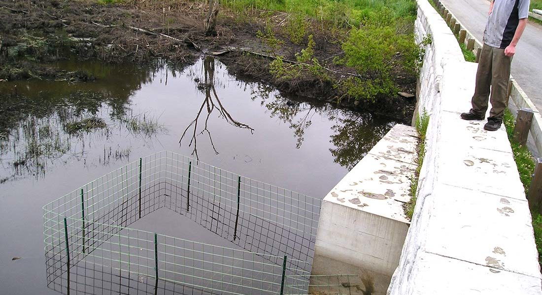 Get Beaver Proof Culverts Using Keystone Fences from BeaverSolutions.com